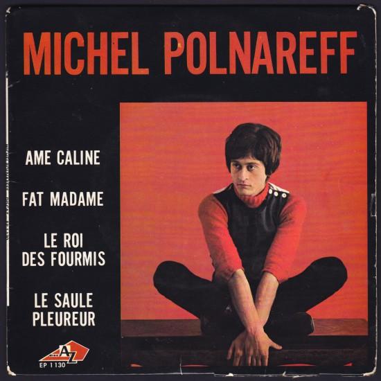 Polnareff_45